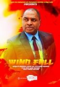 Wind Fall on iROKOtv - Nollywood