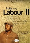 The Fruit Of My Labour  2 on iROKOtv - Nollywood