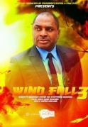 Wind Fall 3 on iROKOtv - Nollywood