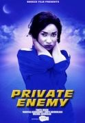 Private Enemy on iROKOtv - Nollywood