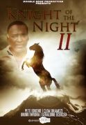 Knight Of The Night 2 on iROKOtv - Nollywood
